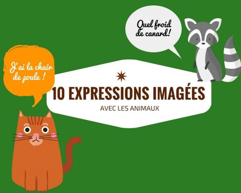 10 expressions imagées avec les animaux